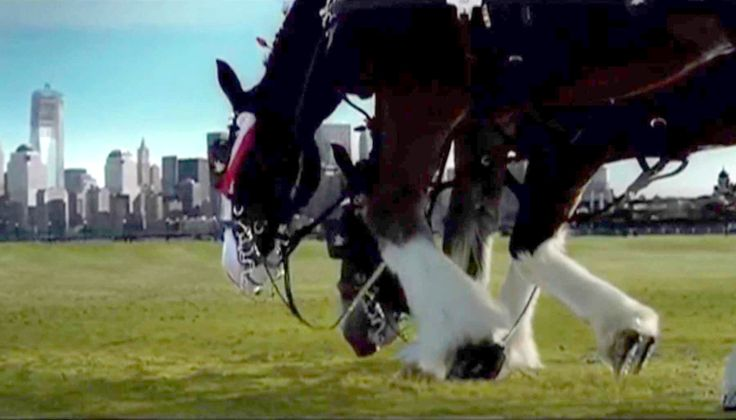 ST. LOUIS, MO (KTVI) -  An ad featuring the Budweiser Clydesdales aired only one time during the Super Bowl of 2002.  The horses pay tribute to the memory of the fallen of September 11th with an un...