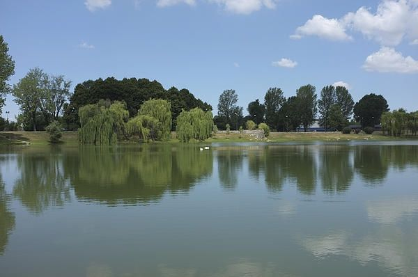 Reflections in a park in Milan, Italy, one of my photographs on Pinterest