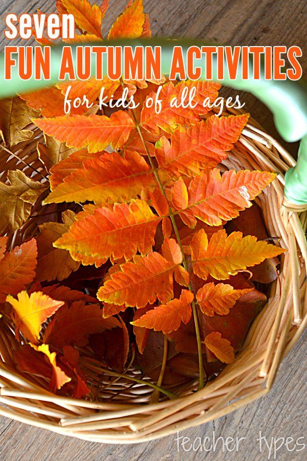 7 fun autumn activity ideas suitable for toddlers, preschoolers, kindergarteners and first graders from Childhood 101
