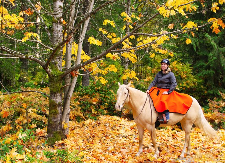 Laurie and Bailey enjoying a beautiful fall day trail ride, wearing her High Vis heavy weight saddle skirt which is keeping her dry and warm.    #DiscoveryTrekking#horses #horseaddict#trailriding #falltime