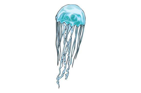 Jellyfish Vector Art Graphic By Rfg Creative Fabrica