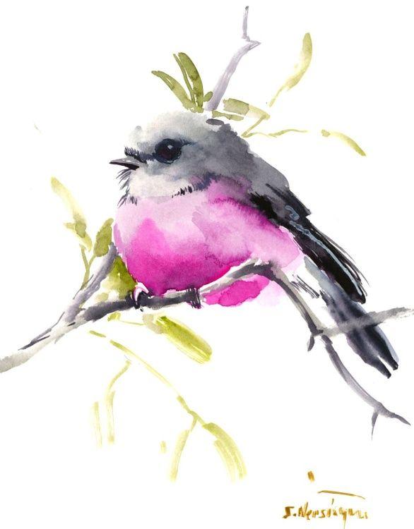 Pink Robin (2016) Watercolours by Suren Nersisyan   Artfinder