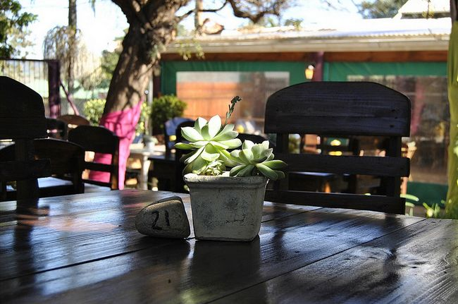 Tolbos is my special place to go when I want to break away… especially when I can sit outside under the tree, with a coffee. Then of course, the food is the best, country style! Make a note in your diary. It's a must!