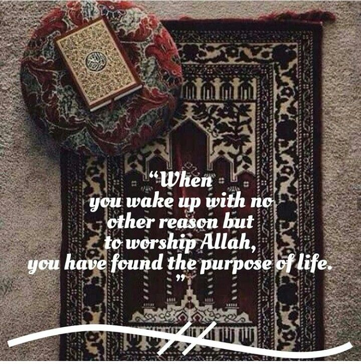 The purpose of life. SubhanAllah.
