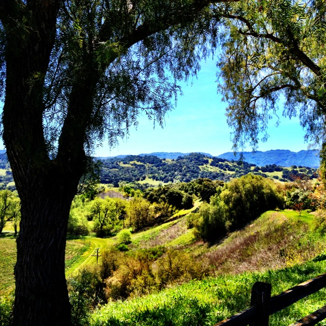 Looking out from Mission Santa Inez at the Central Valley landscape in the Santa Ynez Valley.