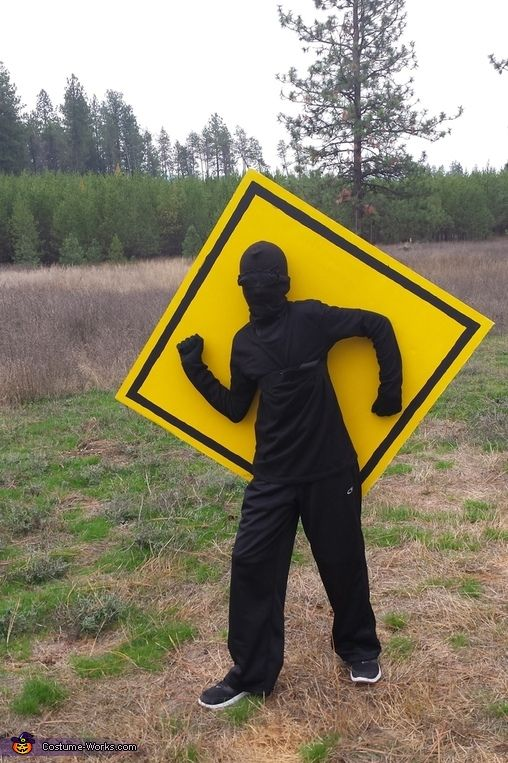 Rhonda: This is my 11 year old son, Ben. He made this costume after reading a funny book about Stick Man on traffic signs. He spray painted a large piece of...