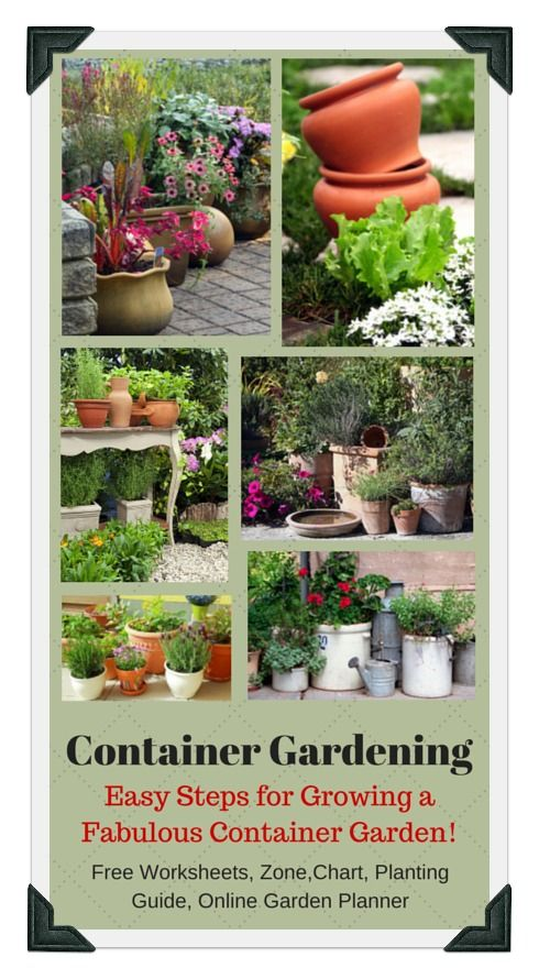 205 best Ve able Gardening Ideas Organic DIY images on Pinterest