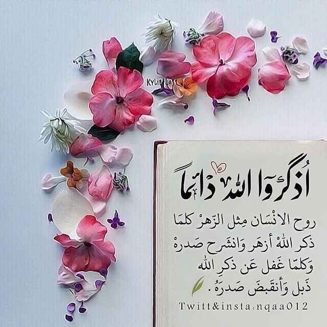 Untitled Muslim Greeting Assalamualaikum Image Good Morning Inspirational Quotes