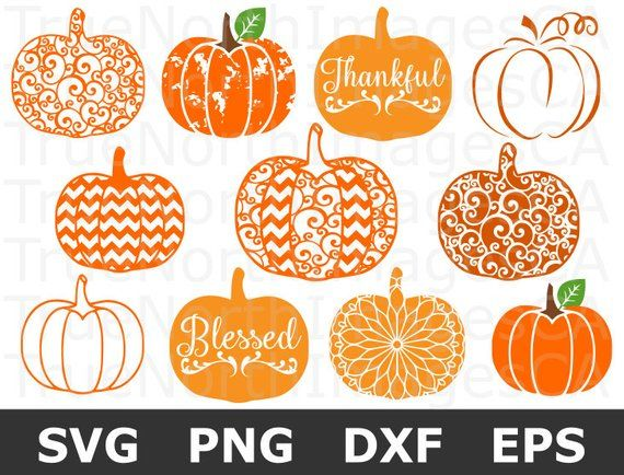 39+ Cutest Pumpkin – Dxf/Svg/Png/Pdf Cut & Print Files PNG