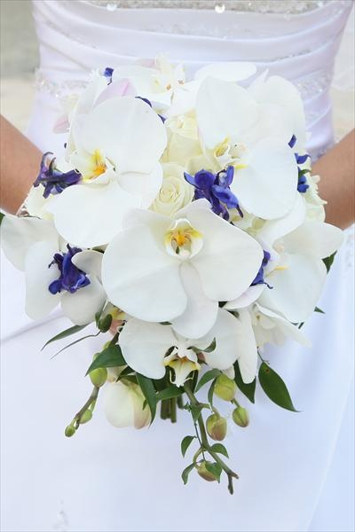 I love these flowersView Photos, Gardens Gnomes, Gorgeous Flower, Wedding Photos, White Bouquets, Brides Bouquets, Beautiful Things