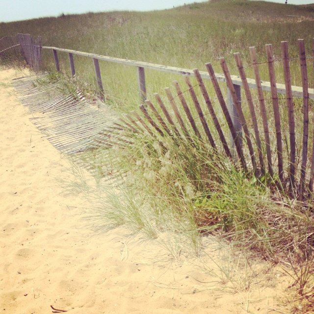 Beach paths: Summertime Favorites, Beaches Paths