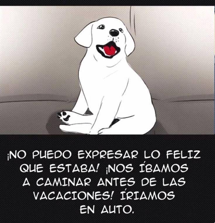 Su familia la abandonó por un perro más joven, esta es una de las historias MÁS TRISTES que habrás leido en Internet