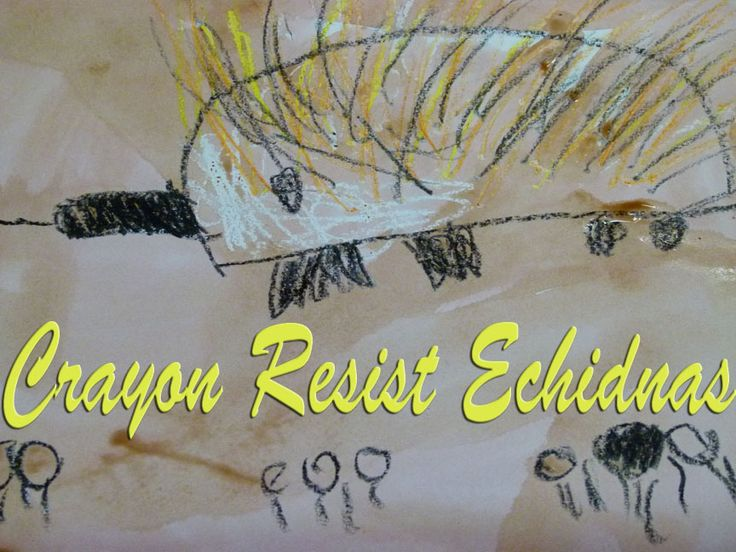 Crayon Resist Echidnas :: Lessons from a Teacher