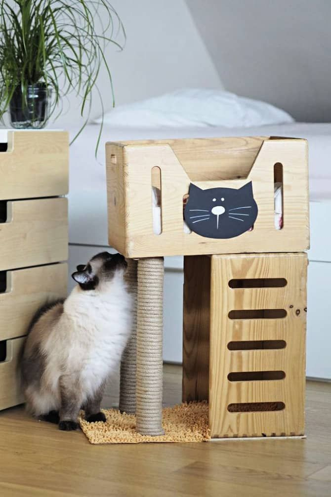 30 Best Diy Outdoor Cat House Plans Cat Tree House Cat House Plans Diy Cat Tree