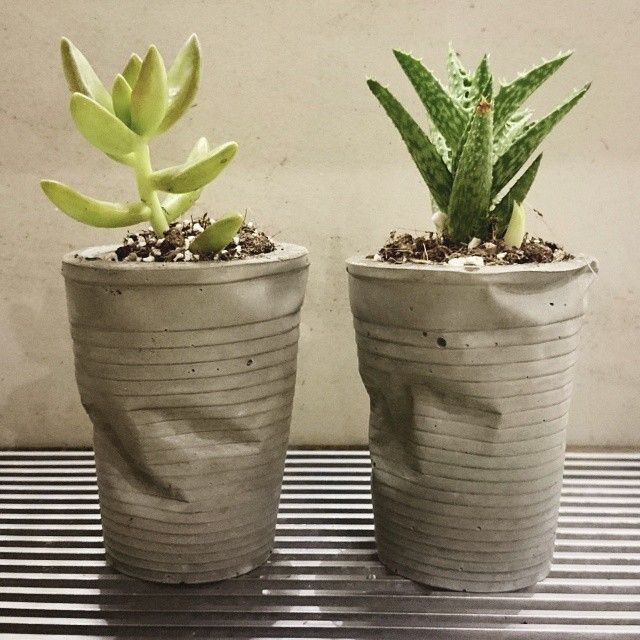 #ShareIG The crushed brothers were sold in the first week of retail at Great World City! We hope your new family treats you both well! :) #tripleeyelid #handmade #concrete #crushed #desk #planter #cactus #upcycle #madeinsg #industrial #minimal #diy