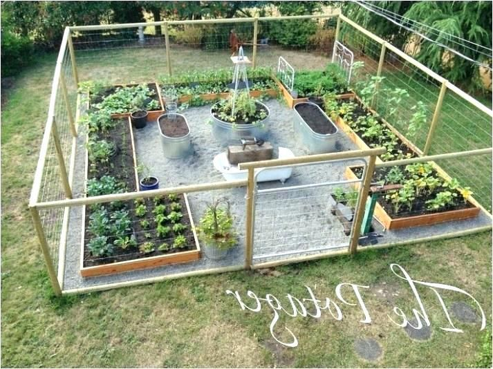 Vegetable Garden Layout Ideas Stock Tank Garden Vegetable