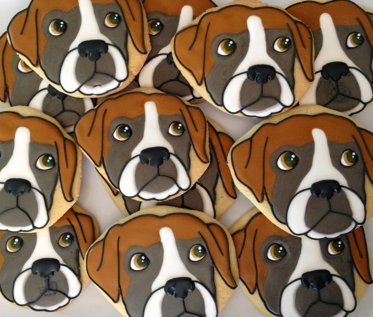 Boxer Dog Cookies~                  By Oh Sugar Events: Boxer Dog Cookies 2.0, brown, grey