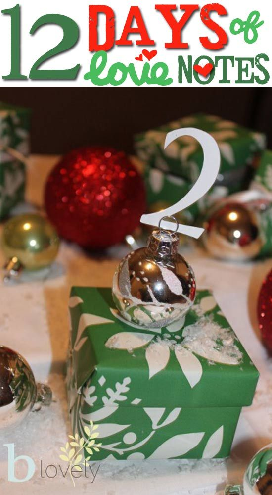 12 Days of Christmas love noes for the hubby! Fun && inexpensive?! I think I will!