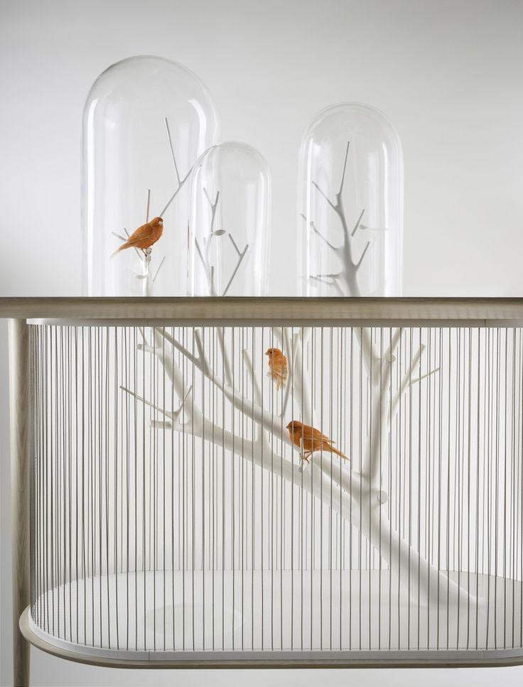 Diseño, una jaula para pájaros | tránsito inicial