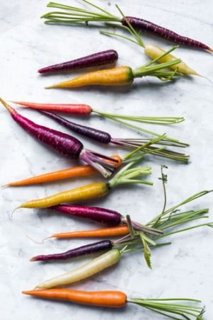 Carrots| Eva Kolenko Photography