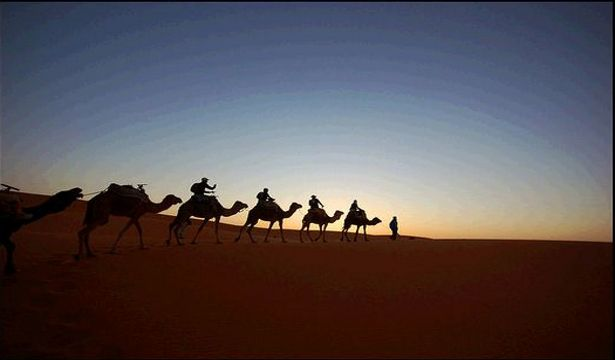 In the desert of Morocco, camel caravan is will take you days deeply in the sahara desert. It's a hard experience, but for adventure travelers it will be the ex