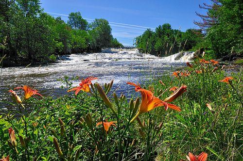 Les magnifiques chutes de la Nicolet au Parc Marie-Victorin Kingsey Falls(crédit: Serge Pilon) by Parc Marie-Victorin, via Flickr