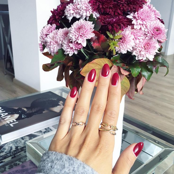 My favorite color for fall  And how gorgeous are these flowers? I live for them  (The nail polish is Malaga Wine from #OPI) #fall