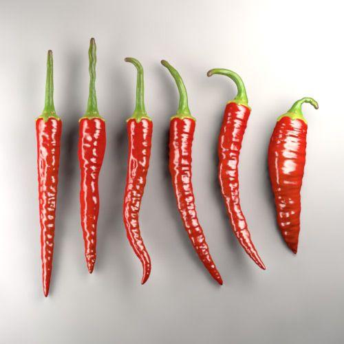 Red Hot Chilli Pepper 3D Model Download | obj modo lxo lwo - 3D Squirrel