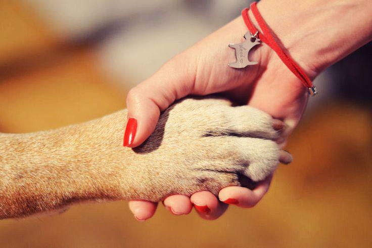 furioussquirrel.blogspot.com & by ilo with dog #byilo #byilojewellery #bacelet #handmade #dog #blogger #fashion #design #bransoletka #bizuteria