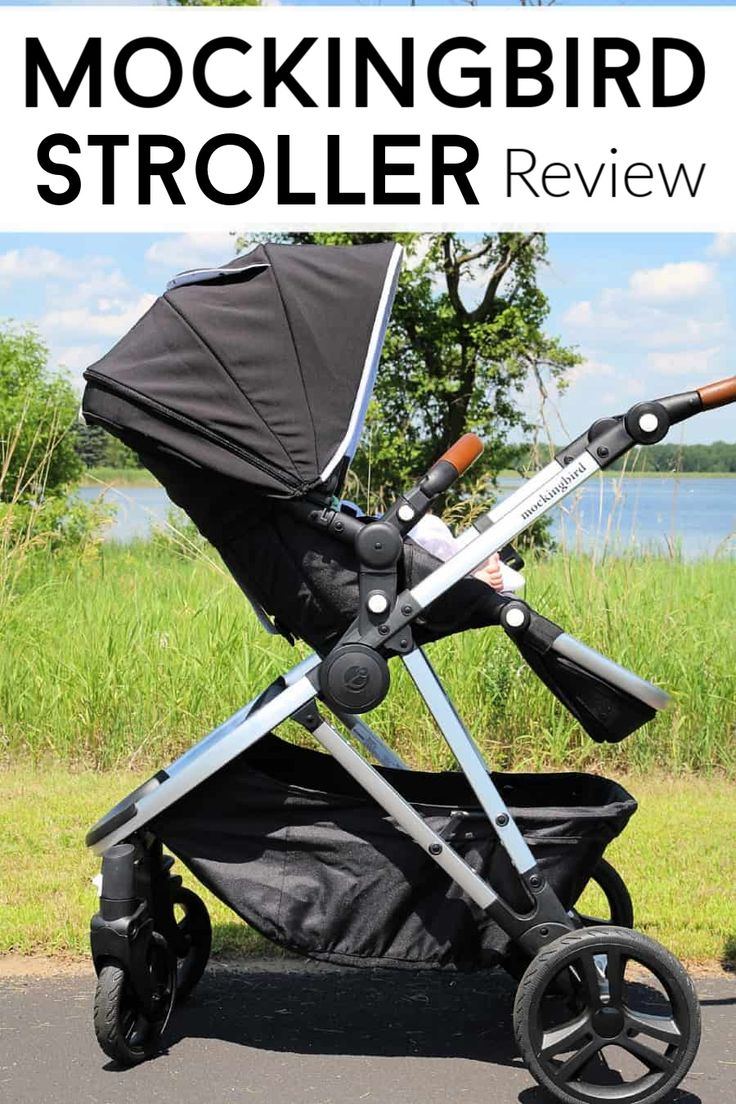 A detailed review of the Mockingbird Stroller everything