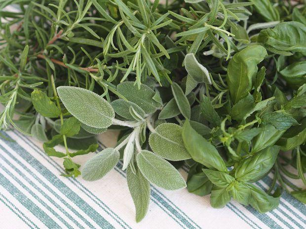 Slaapkamer Met Planten : ... Slaapkamer Planten op Pinterest ...
