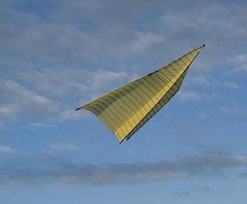 51 best images about Go fly a kite on Pinterest | Birds, 4s line ...