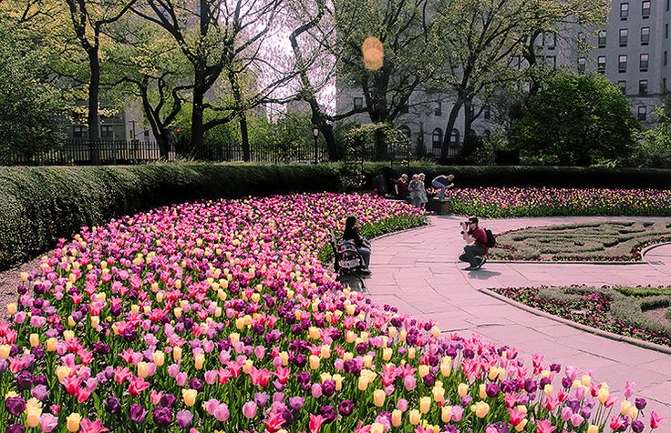 NY- Spring in the Conservatory Garden