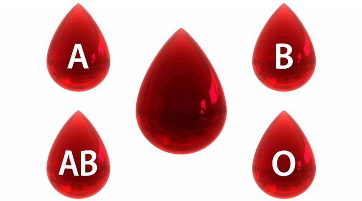 Blood Type Classification AB A B O ABO System RhD System #facts