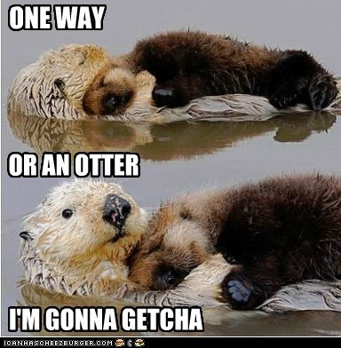 Probably the Otter