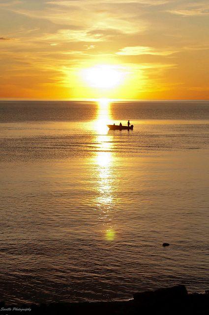 Midnight Sun Fishing #sunset