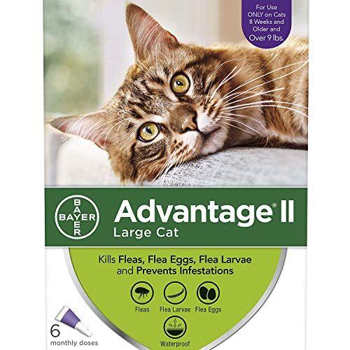 Advantage II OnceAMonth Cat & Kitten Topical Flea