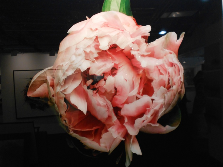 The Studio Harrods visits The London Art Fair