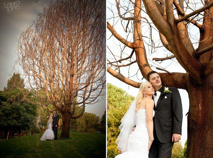 EnGedi Wedding – Matthew and Salomé