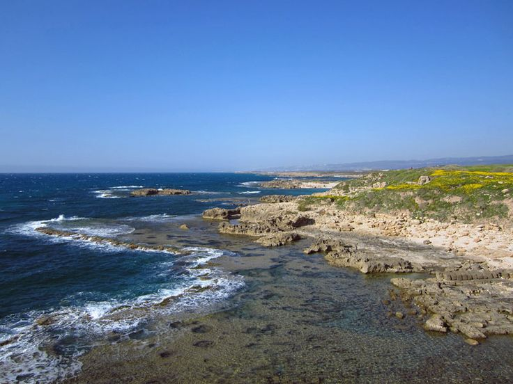 19 best israels beaches images on pinterest holy land israel israeli beach the combination of white sand rocky coastline and crystal clear blue water make the beaches in israel some of the best i have ever seen publicscrutiny Gallery