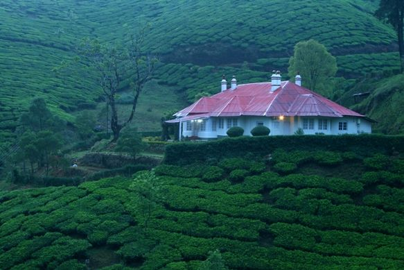 The Beautiful Tea Estates And Bungalows In Munnar In The State Of Kerala India Places