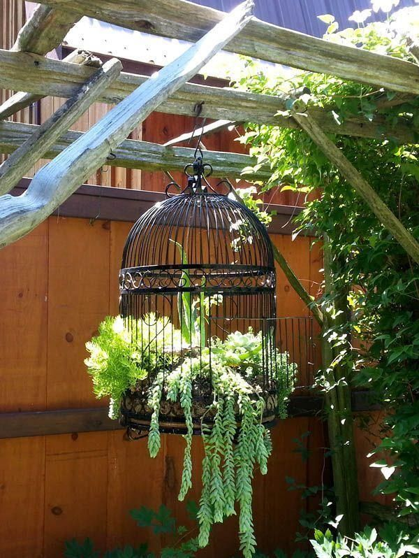 DIY Bird cage idea for garden planter - I am SO doing this with the old birdcage I found at second hand store!
