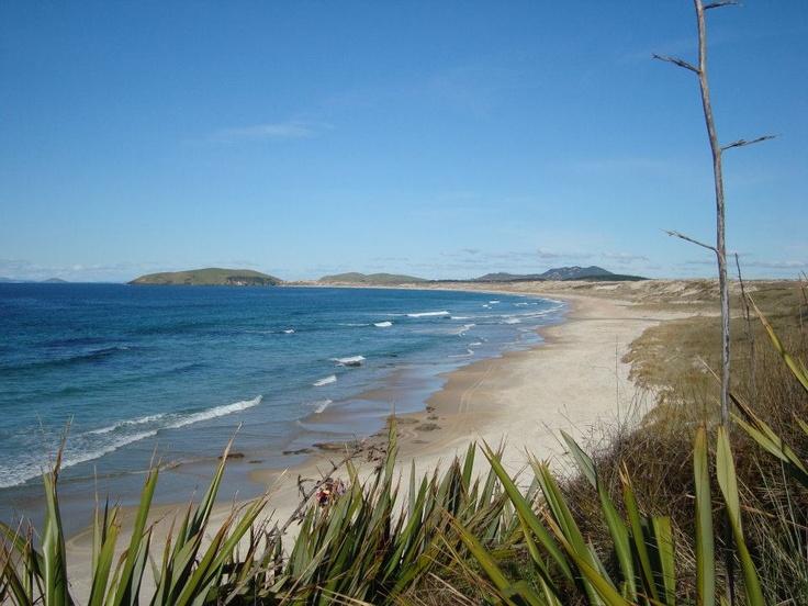 Henderson Bay - New Zealand