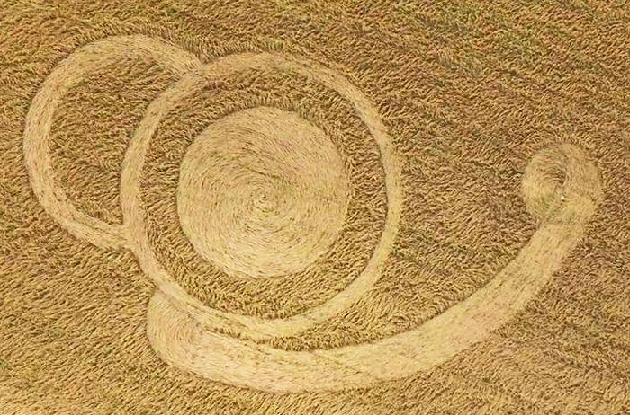 Crop Circle at Campo de Trigo, Malabrigo, Santa Fe, Argentina. Reported 21st October 2016