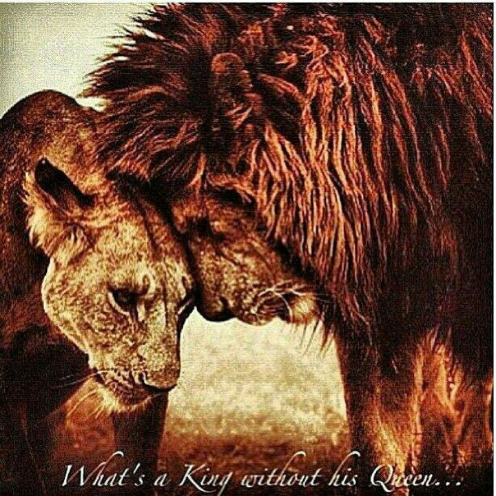 what 39 s a king without his queen quotes pinterest