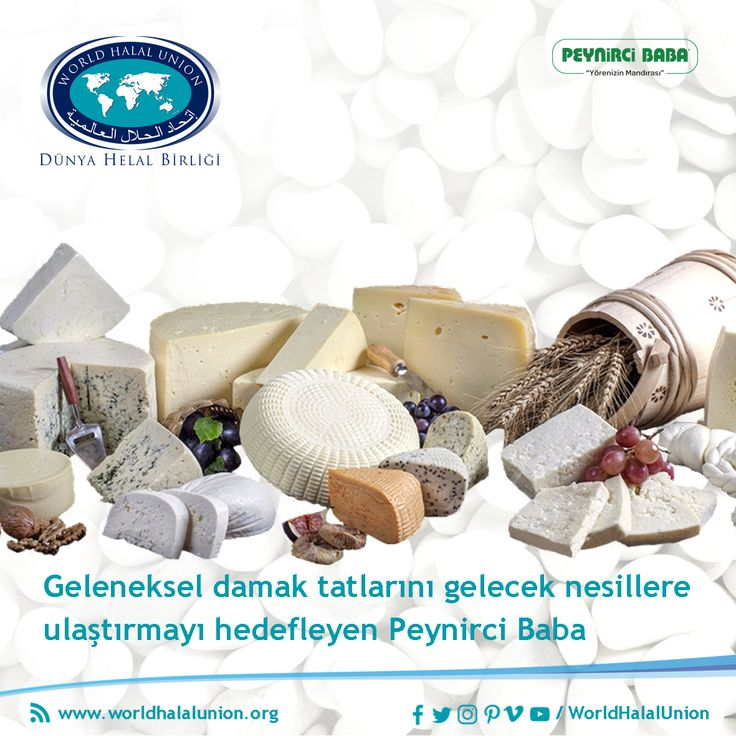 31 best sertifikalandırılmış markalar certified brands images on