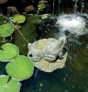 Floating Frogs on Lily Pad - Pond Spitter - Pump Included - Water Garden Feature - Frog Water Fountain