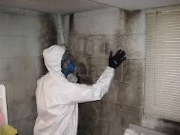 This is important because you do not want the company who is performing the Mold removal Fort Lauderdale Specialist project to also be the one who is providing the post testing due to potential conflicts of interest. It is crucial to us that our customers feel confident that all molds has been effectively removed and will not be returning. More Details: http://miamimoldspecialist.com