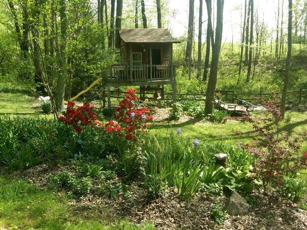 I love my yard  in the spring