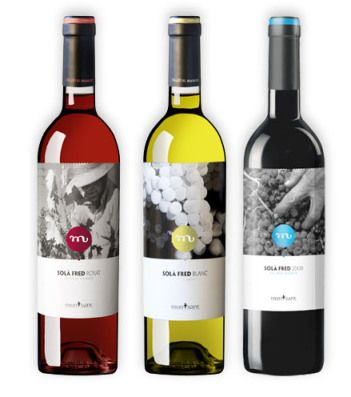 Great grapes on sola_fred_masroig #wine #packaging PD
